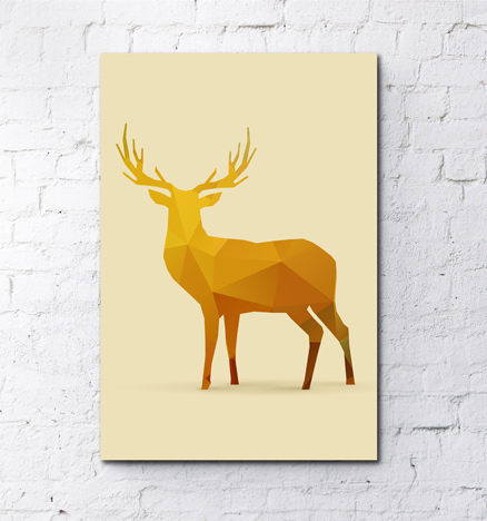 fotoboardy-animals-008